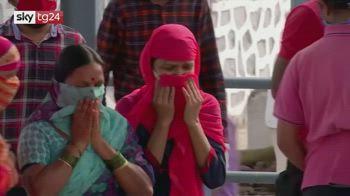 Covid, speranza vieta ingressi da India per record contagi