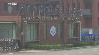 Origine virus, Pechino: altro che fuga da laboratorio, studiosi meritano Nobel