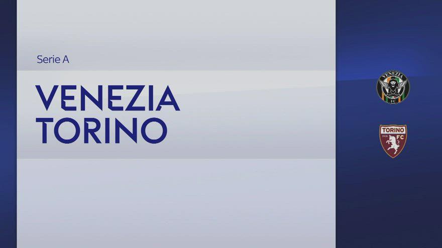Venezia-Torino 1-1: gol e highlights
