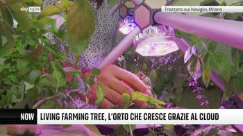++NOW Living Farming tree, l'orto cresce grazie al cloud